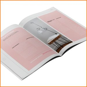 Direct Mail Examples