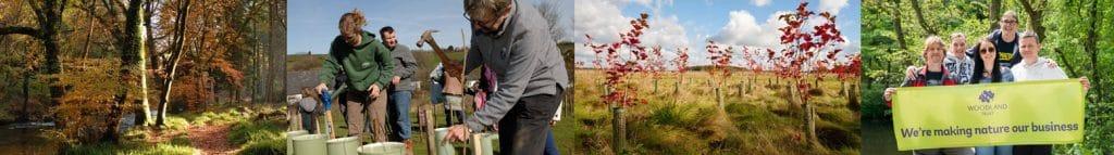 The Woodland Trust - Woodland Carbon